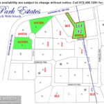 Lewis Park Estates Community in Lucas TX-Lot#2 February 2021- Homes By J. Anthony-DFW Custom Home Builder