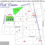 Lewis Park Estates Community in Lucas TX-Lot#19 February 2021- Homes By J. Anthony-DFW Custom Home Builder